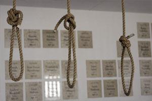 hangs-300