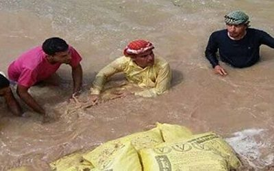 Iran Arrests Arab Activists for Providing Relief to Flood Victims